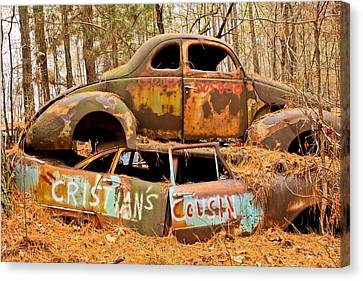 Pine Needles Canvas Print - Cristian's Cousin by Tom and Pat Cory