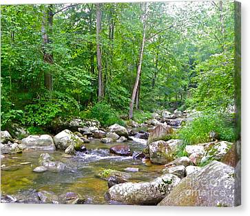 Canvas Print featuring the photograph Crooked Creek by Eve Spring
