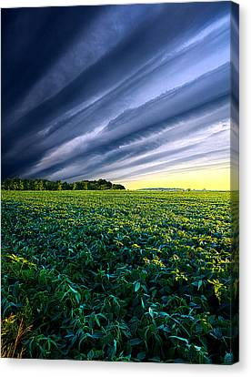Crossing Over Canvas Print by Phil Koch