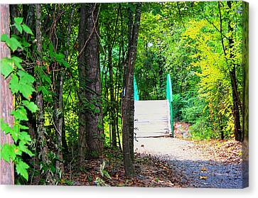 Crossing To The Other Side Canvas Print by Ester  Rogers