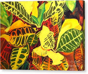 Croton Joy Canvas Print
