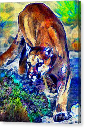 Crouching Cougar Canvas Print by Elinor Mavor