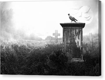 Crow On A Gravestone Canvas Print by Jaroslaw Grudzinski