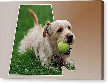 Canvas Print featuring the photograph Cruz My Ball by Thomas Woolworth