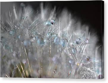 Crystal Flower Canvas Print