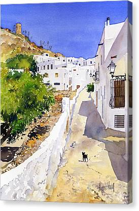 Cuesta De La Atalaya Nijar Canvas Print by Margaret Merry