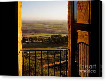 Cultivated Land In Spain Canvas Print by Spencer Grant and Photo Researchers