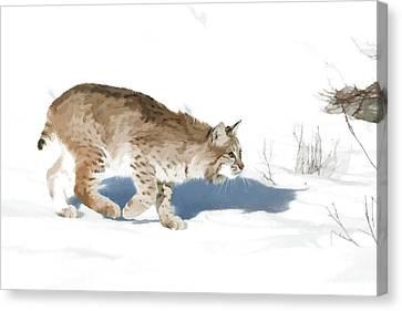 Cunning Cat Feet Canvas Print