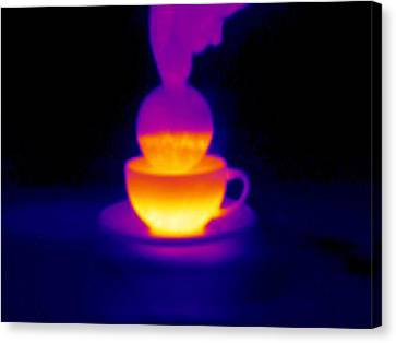 Cup Of Tea, Thermogram Canvas Print by Tony Mcconnell