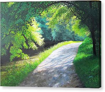 Curve Canal And Sunlight Canvas Print by David Bottini