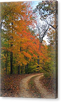 Curve In Fall Canvas Print by Marty Koch