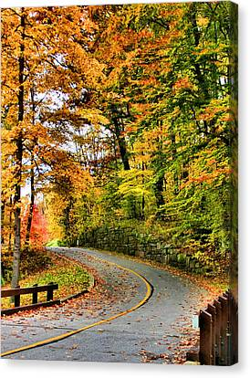 Curve In The Road Canvas Print by Kristin Elmquist