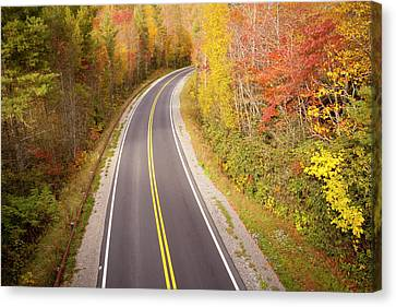 Curvy Road Blue Ridge Parkway, North Carolina Canvas Print