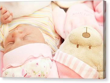 Cute Little Baby Sleeping Canvas Print by Anna Om