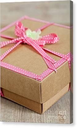 Cute Present Pack Canvas Print by Sabino Parente