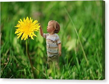 Cute Tiny Boy Playing In The Grass Canvas Print by Jaroslaw Grudzinski