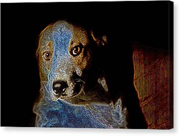 Cutie Canvas Print by One Rude Dawg Orcutt