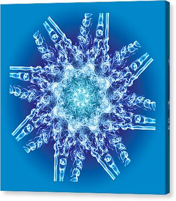 Cyanide Snowflake Canvas Print by Val Black Russian Tourchin