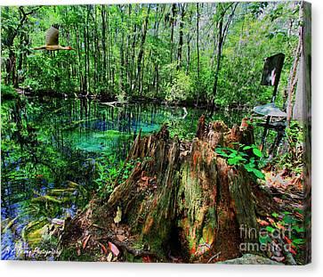 Cypress Stump At Buford Spring Canvas Print by Barbara Bowen