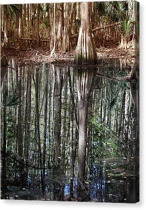 Cypress Swamp Reflections Canvas Print by Joseph G Holland