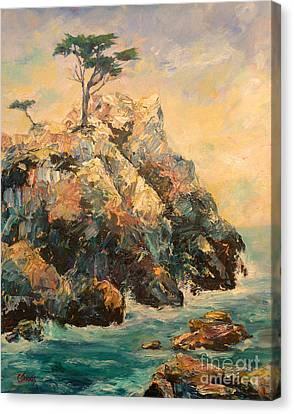 Cypress Tree Canvas Print by Carolyn Jarvis