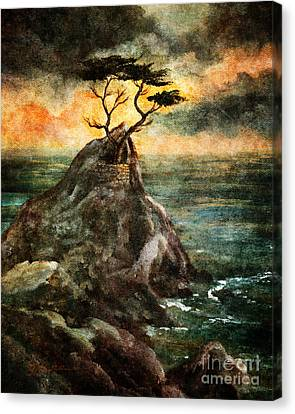 Cypress Tree In Storm Canvas Print by Laura Iverson