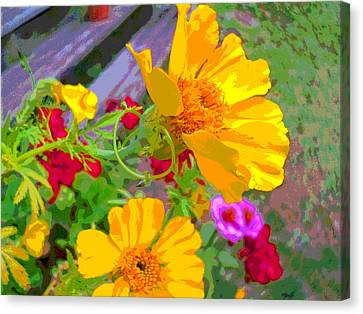 Cypress Vine And Flowers By Porch Steps Canvas Print