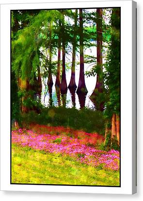 Cypress With Oxalis Canvas Print by Judi Bagwell