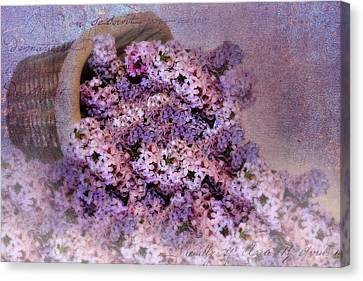 Daddy's Lilacs Series II Canvas Print by Kathy Jennings