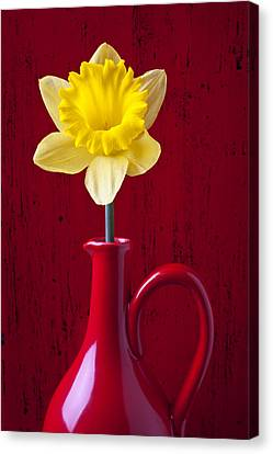 Daffodils Canvas Print - Daffodil In Red Pitcher by Garry Gay