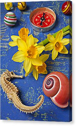 Daffodils And Seahorse Canvas Print by Garry Gay