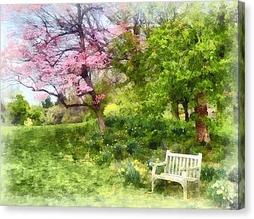 Daffodils By Bench Canvas Print by Susan Savad