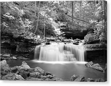 Dainty Waterfall Canvas Print by David Troxel