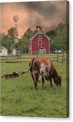 Dairy Farm Canvas Print