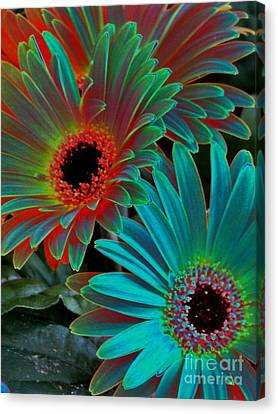 Canvas Print featuring the photograph Daisies From Another Dimension by Rory Sagner