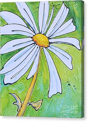 Daisy Face Canvas Print by Barbara Tibbets