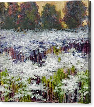 Daisy Field Canvas Print by Vic  Mastis