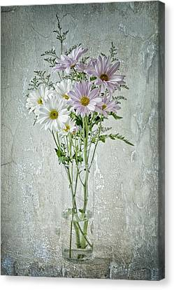 Daisy Canvas Print by James Bethanis