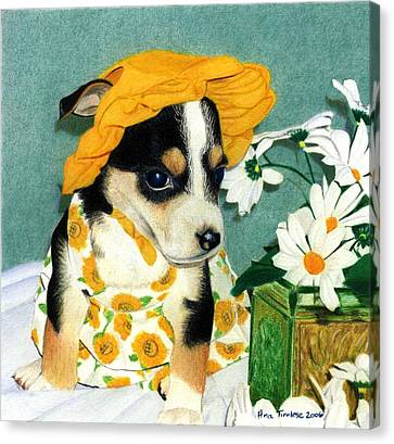 Canvas Print featuring the drawing Daisy-mae Dawg by Ana Tirolese