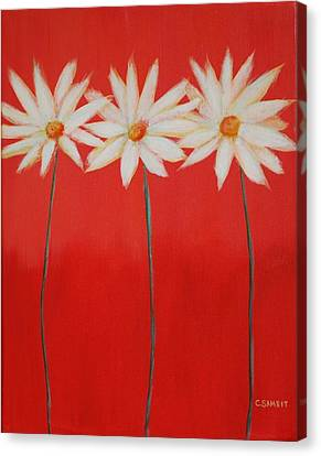 Daisy Trio - Red Canvas Print by Cheryl Sameit