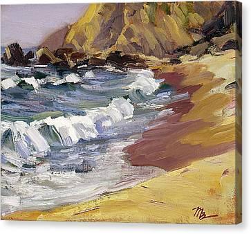 Dana Point Beachhead Canvas Print by Mark Lunde