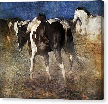 Dancing Horses Canvas Print
