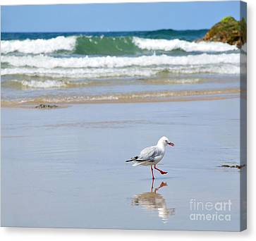 Dancing On The Beach Canvas Print by Kaye Menner