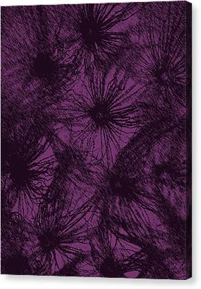 Dandelion Abstract Canvas Print by Ernie Echols
