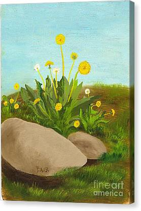 Dandelion Field Canvas Print
