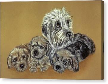 Dandie Dinmont Terriers Canvas Print by Patricia Ivy