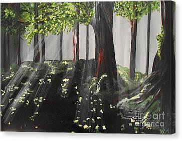 Dappled Forest 1 Canvas Print by Jayne Kerr