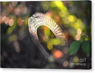 Dappled Web Of Deceit Canvas Print by Maria Urso