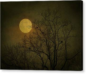 Canvas Print featuring the photograph Dark Moon by Robin Dickinson