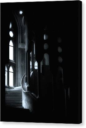 Dark Passage II Canvas Print by Lynn Andrews